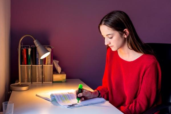 Young person in red sweater highlights a paper at their desk